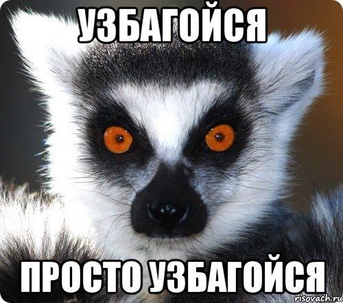 Похищенные террористами на Луганщине члены миссии ОБСЕ вышли на связь, - СМИ - Цензор.НЕТ 6554