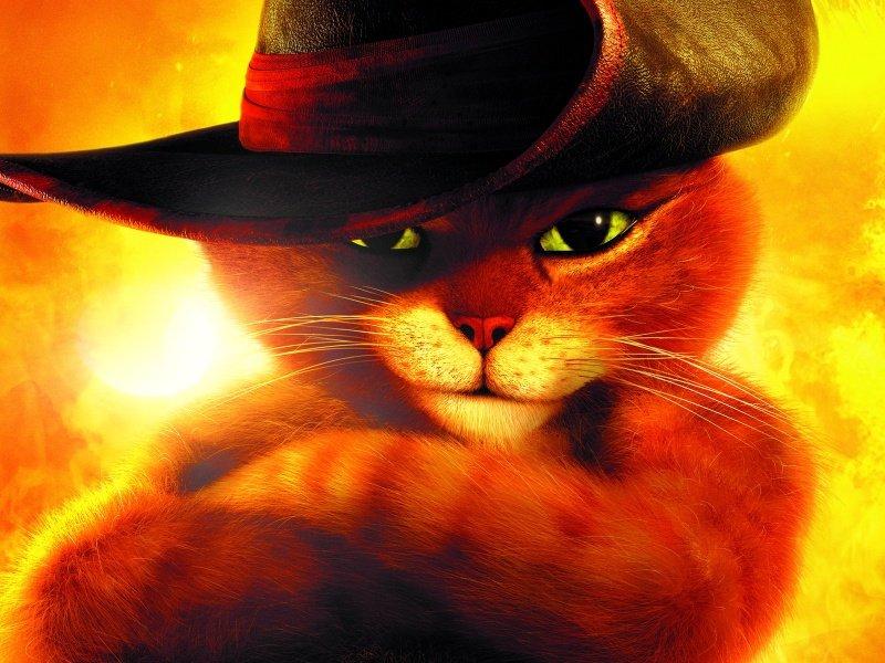 Котенок в сапогах 10