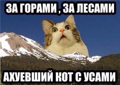 http://s5.pikabu.ru/images/previews_comm/2014-06_3/14027024074649.jpg