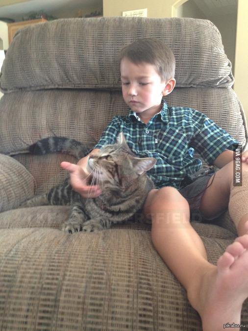 это Тара,кошка,которая спасла мальчика от собаки   мальчик и собака, кот