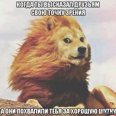 И не понимаешь как быть   друзья, мнение, doge