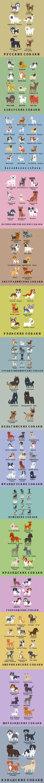 Собак породы Если Вы хотите завести себе собаку, но не можете сделать правильный выбор, быть может данный пост будет Вам полезен)  собачки, породы, длиннопост