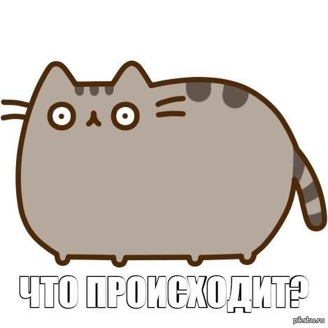 1412594699_4645758.jpg