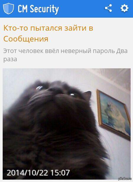 http://s5.pikabu.ru/post_img/2014/10/22/8/1413980585_942529527.jpg