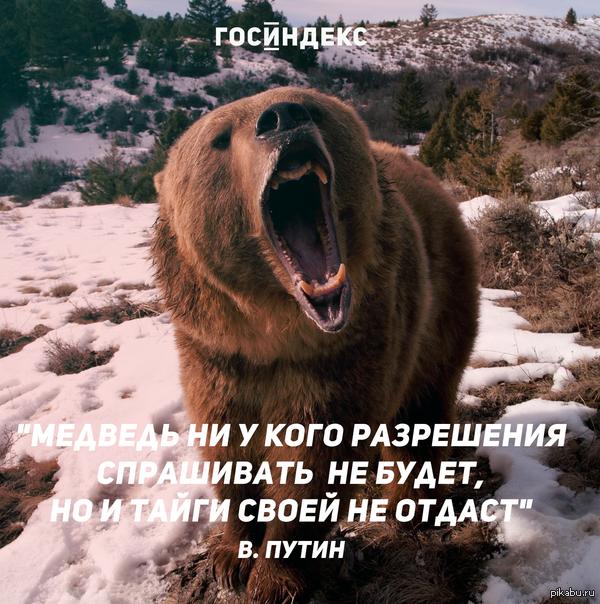 Тайги не отдадим  Лучшая цитата Путина из его сегодняшнего выступления на Валдае  Россия, запад, США, санкции против США, Путин