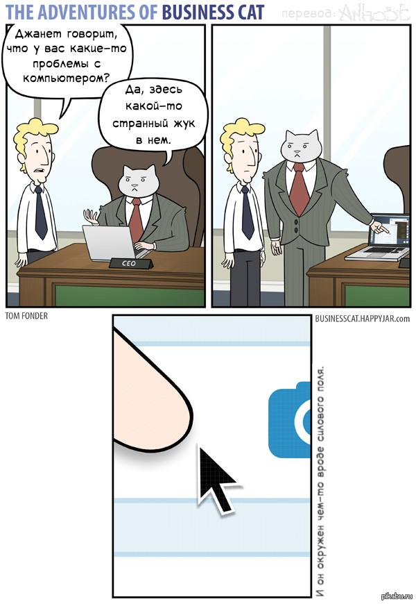 Бизнес кот играть