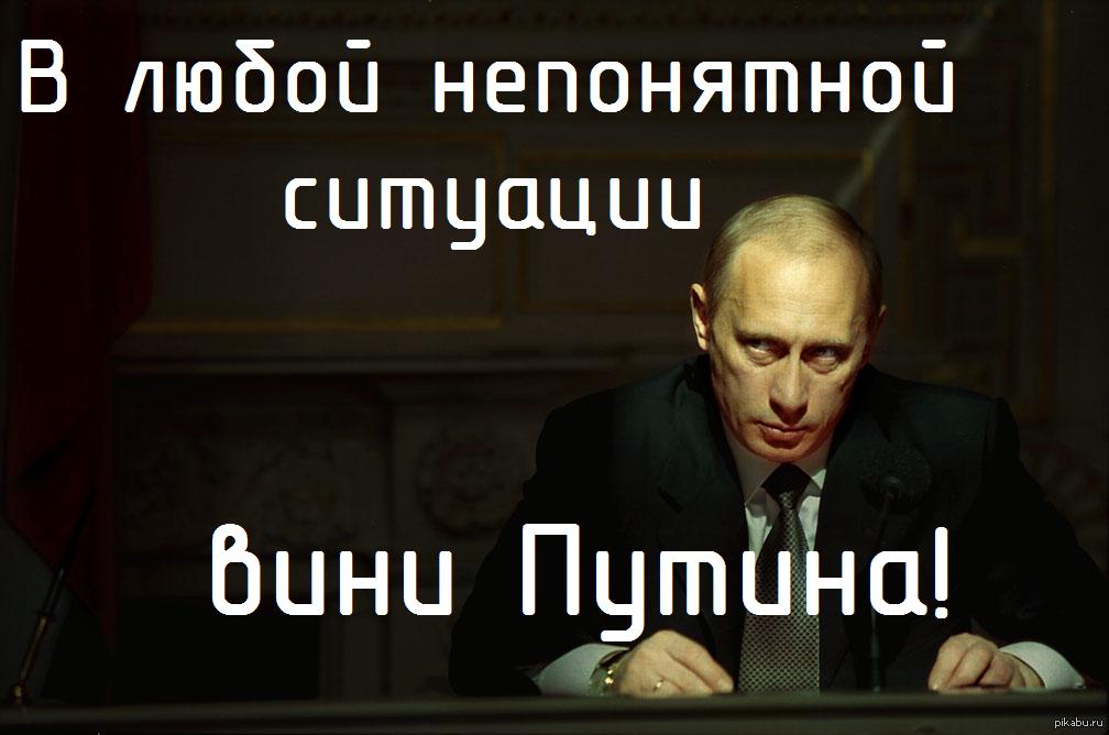 Почему во всём виноват Путин?