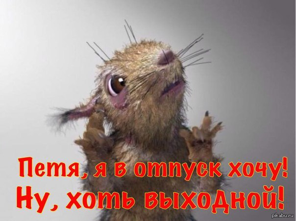 http://s5.pikabu.ru/post_img/big/2015/10/12/5/1444633400_442421889.jpg