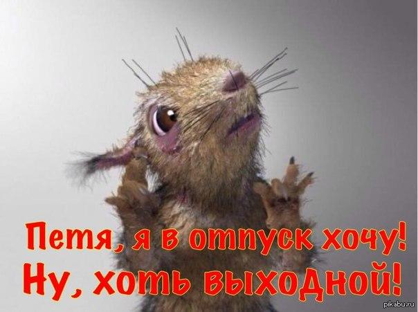 http://s5.pikabu.ru/post_img/big/2015/10/12/5/1444633400_442421889.jpg