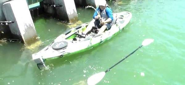 морской окунь лодка